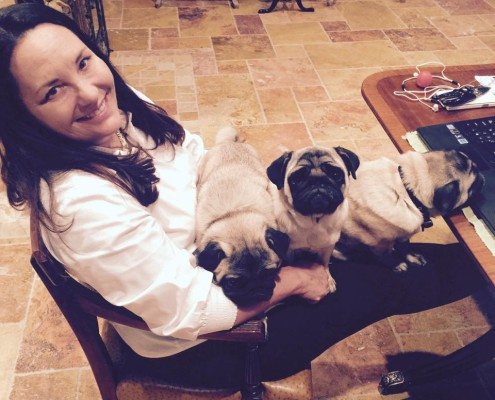 Friday with Pugs
